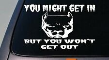 "YOU MIGHT GET IN *B160* American pit bull pitbull BULLY 6""sticker decal apbt DOG"