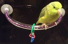 """Purple 12"""" Small Bird / Parrot - Window or Shower Suction Perch"""
