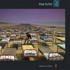 Pink Floyd/A Momentary Lapse of Reason, 180 gram Vinyl LP (new)