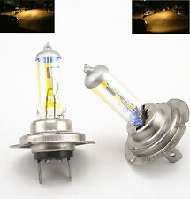 H7 55W 3000K 12V GOLDEN YELLOW XENON HID HALOGEN HEADLIGHT BULBS LOW&HIGH BEAM