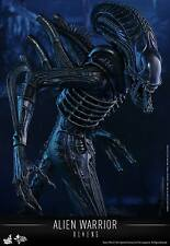 Alien Warrior (Aliens) Hot Toys 1/6 Escala Figura Reino Unido enviado ** En Stock ahora **