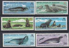 British Antarctic Territory 1983 Convenzione + protezione delle foche 118-23 MNH