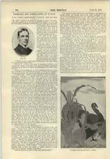 1896 Mr Mark Lemon As Falstaff Ladies Home Journal Mr Bok
