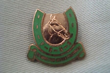 RARE VINTAGE OLD ENAMELED FHBS HORSE RIDING CHARITY BUTTON METAL BADGE BROOCH