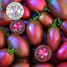Rare UKRANIAN PURPLE Tomato - 10 seeds - UK SELLER