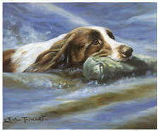 ENGLISH SPRINGER SPANIEL ESS GUNDOG TRAINING DOG FINE ART LIMITED EDITION PRINT