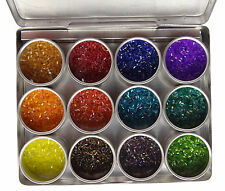 2mm Delica Beads Kit Beading Set In Aluminium Container,12 Assorted Beads Colors