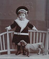 CDV: Süßes Kleinkind mit tollem Spielzeug Dackel Hund; Wien, um 1905