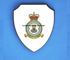 ROYAL AIR FORCE 42 EXPEDITIONARY SUPPORT WING WALL SHIELD (FULL COLOUR)