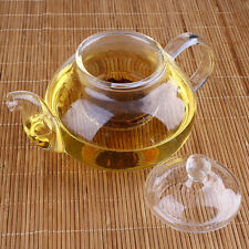 Buy Chashan Tea Pot With Infuser