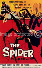Vintage Science Fiction Horror Movie 11x17 Poster The Spider