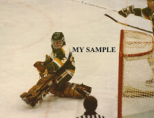 "DON BEAUPRE Minnesota North Stars 8"" by 10"" Photo Hockey Goalie Mask Pads #3"