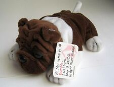 English Bulldog Bullie Dog Beanbag Plush BUMPER American Heart Association Tag
