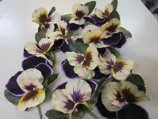 "12 BEAUTIFUL UNUSED VINTAGE PANSY 5"" FLOWERS  MILLINERY SUPPLIES  FLORAL CRAFTS"