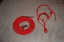 RED 14' LEAD ROPE WITH BULL SNAP & MATCHING STIFF 4-KNOT TRAINING HALTER