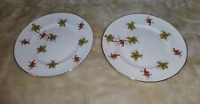 2 Royal Victoria ROV1 Fine Bone China Salad/Lunch Plates Red Grapes Green Leaves