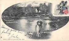 Stevensville New York birds eye view dog at falls and outlet antique pc Z23020