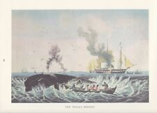 "1974 Vintage Currier & Ives WHALING ""THE WHALE FISHERY"" COLOR Lithograph"