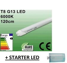1 AMPOULE TUBE LED NEON 20W ULTRA BLANC 6000K - 120 CM + STARTER LED