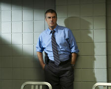 Noth, Chris [Law and Order : CI] (31152) 8x10 Photo