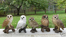 5 OWL FIGURINES ON TREE STUMPS  HOOTER STATUE WISE OLD OWLS COMPLETE SET RESIN