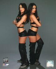BELLA TWINS WWE PHOTO 8x10 STUDIO WRESTLING PROMO NIKKI BRIE