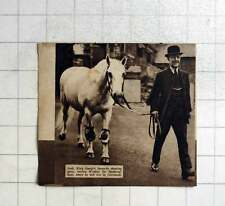 1936 King Georges Favourite Shooting Pony, Jack, Leaves For Retirement