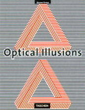 The Eye Beguiled Optical Illusions,ACCEPTABLE Book