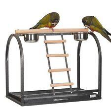 SALE: LIBERTA MERLON PARROT TABLE TOP PLAY STAND FOR SMALL & MEDIUM BIRDS
