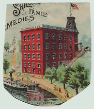 RARE Advertising Scrap / Trade Card Shilo Patent Medicine SC Wells Leroy NY 1880