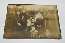 Antique Victorian Photograph Family W/2 American Pitbull Terrier Dogs-Rahway NJ