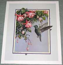 Hummingbird: Beautiful 18x22 In. Art Print