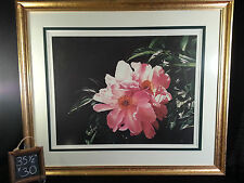 Cluster of Peonies by Arleta Pech Print Painting Number and Pencil Signed 35x30