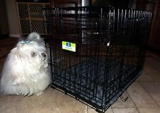 "Top Paw Black Metal 24"" Two Door Folding Dog Crate with Bailey & Bella Pad"