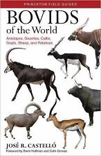 Princeton Field Guides: Bovids of the World : Antelopes, Gazelles, Cattle,...