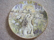 Royal Worcester England Porcelain cat-dog plate,A Surprise Kiss