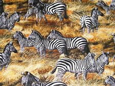 BTY ZEBRA's on the SAVANNAH Print 100% Cotton Quilt Crafting Fabric by Yard