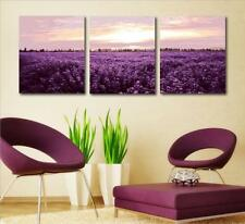 """16x20"""" DIY Home Decor Acrylic Paint By Number Kit Three Parts Lavender 216"""