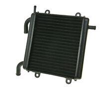 Kühler Aluminium Radiator Wasserkühler für Yamaha Aerox MBK Nitro 50ccm