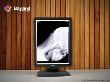 Barco Coronis 3MP MDCG-3120 Grayscale LCD Monitor