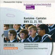 Kantaten Zu Passion, New Music