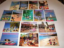 """Lot of 15 Nice Disney Postcards - In The Bahamas - Large 7"""" x 5"""" Size - GREAT !!"""