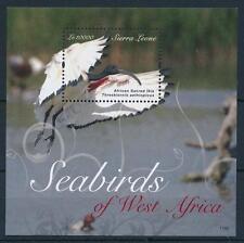 [28627] Sierra Leone 2011 Sea Birds Vögel Oiseaux Ucelli Ibis MNH Sheet
