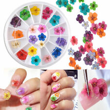 36Pcs Colorful Real Dried Flower Acrylic UV Gel DIY Nail Art Tips Decor Wheel