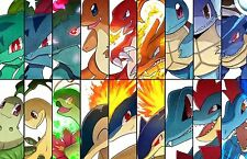 Pokemon - Art - Huge Poster  20 inch x 30 inch  ( Fast Shipping )  in Tube 109