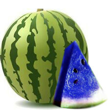 10X Blue Watermelon Seed Vegetable Home Garden Special Variety Organic Plant