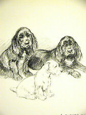 K.F. Barker 1933 TWO BLACK COCKER SPANIELS and a WHITE PUPPY Vintage Art Matted