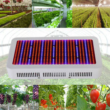 Newest 600W Full Spectrum LED Grow Light Lamp Indoor Hydroponic Veg Flowering