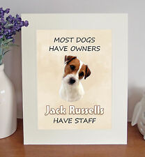 """Jack Russell Terrier 10""""x8"""" Free Standing """"Jack Russells Have Staff"""" Picture"""