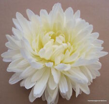 "Large 5 1/2""  Cream White Mum Silk Flower Combo Hair Clip with Broach Pin,Bridal"